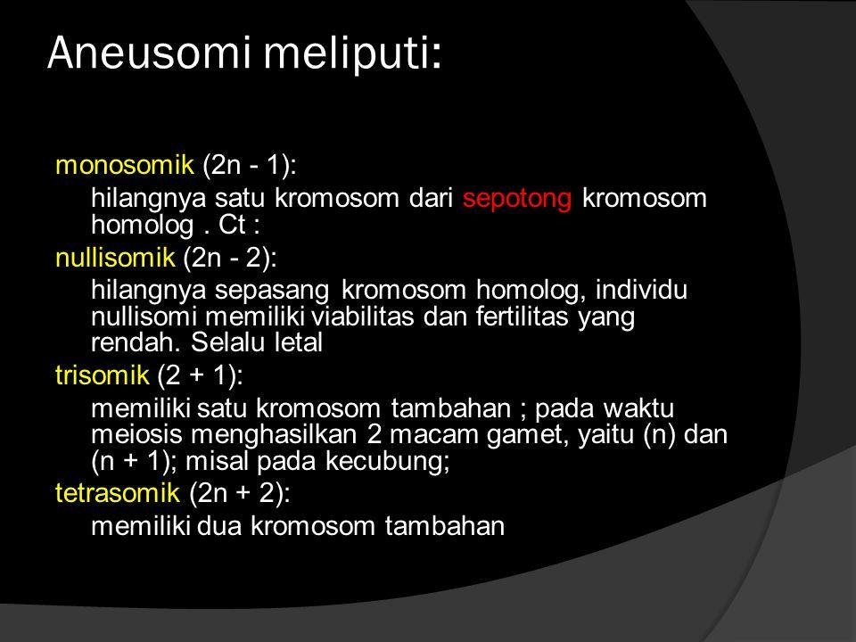 Aneusomi meliputi: monosomik (2n - 1): hilangnya satu kromosom dari sepotong kromosom homolog. Ct : nullisomik (2n - 2): hilangnya sepasang kromosom h