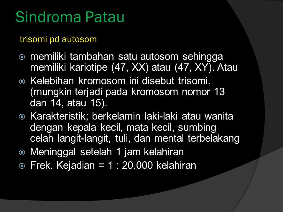Sindroma Patau trisomi pd autosom  memiliki tambahan satu autosom sehingga memiliki kariotipe (47, XX) atau (47, XY). Atau  Kelebihan kromosom ini d