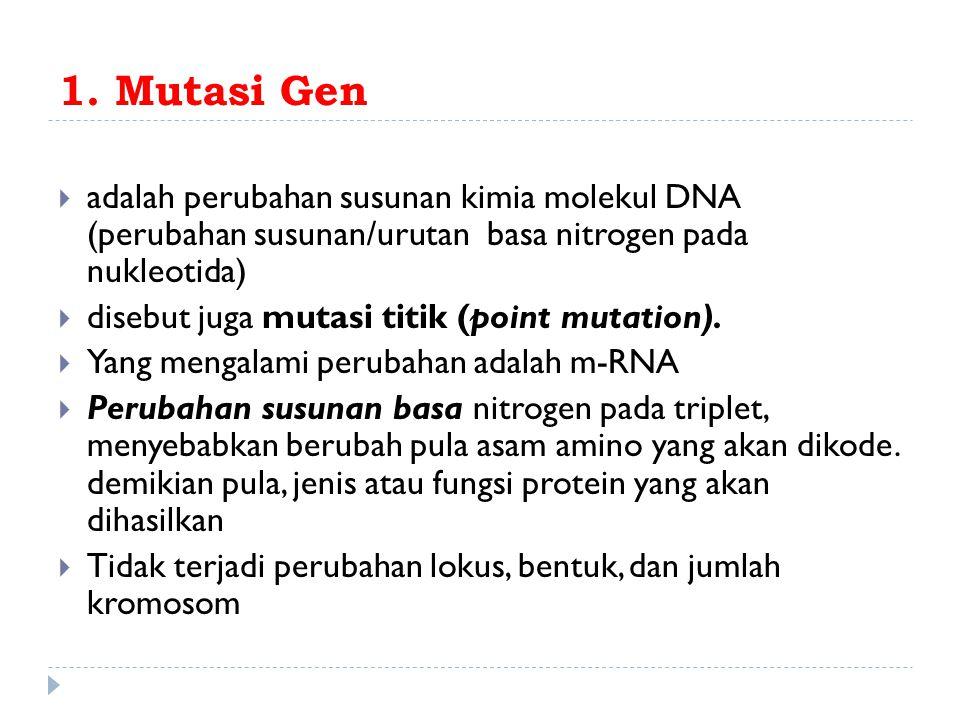 1. Mutasi Gen  adalah perubahan susunan kimia molekul DNA (perubahan susunan/urutan basa nitrogen pada nukleotida)  disebut juga mutasi titik (point
