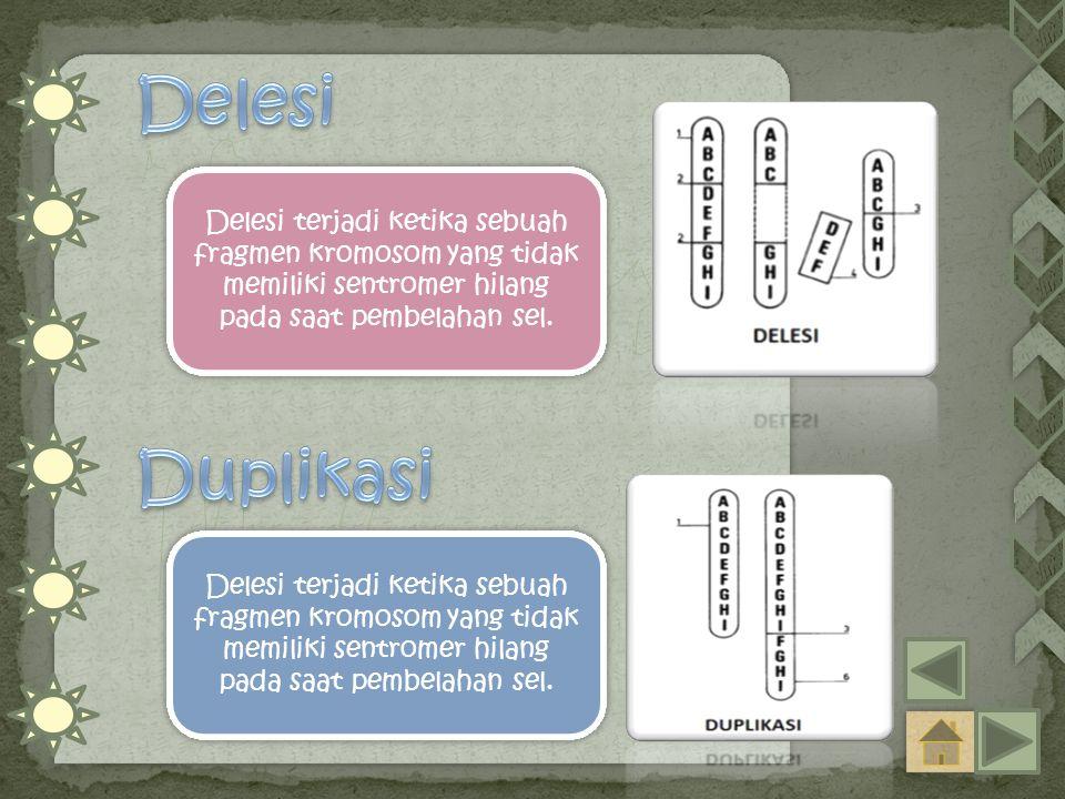 Delesi terjadi ketika sebuah fragmen kromosom yang tidak memiliki sentromer hilang pada saat pembelahan sel.