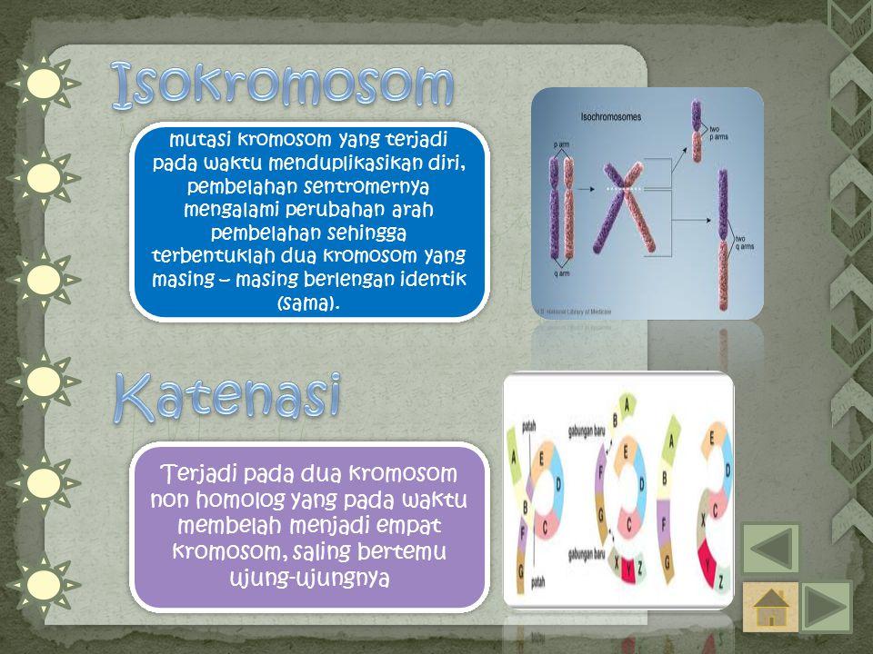 mutasi kromosom yang terjadi pada waktu menduplikasikan diri, pembelahan sentromernya mengalami perubahan arah pembelahan sehingga terbentuklah dua kromosom yang masing – masing berlengan identik (sama).