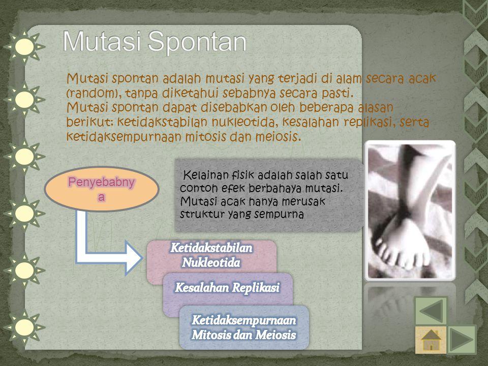 Mutasi spontan adalah mutasi yang terjadi di alam secara acak (random), tanpa diketahui sebabnya secara pasti.