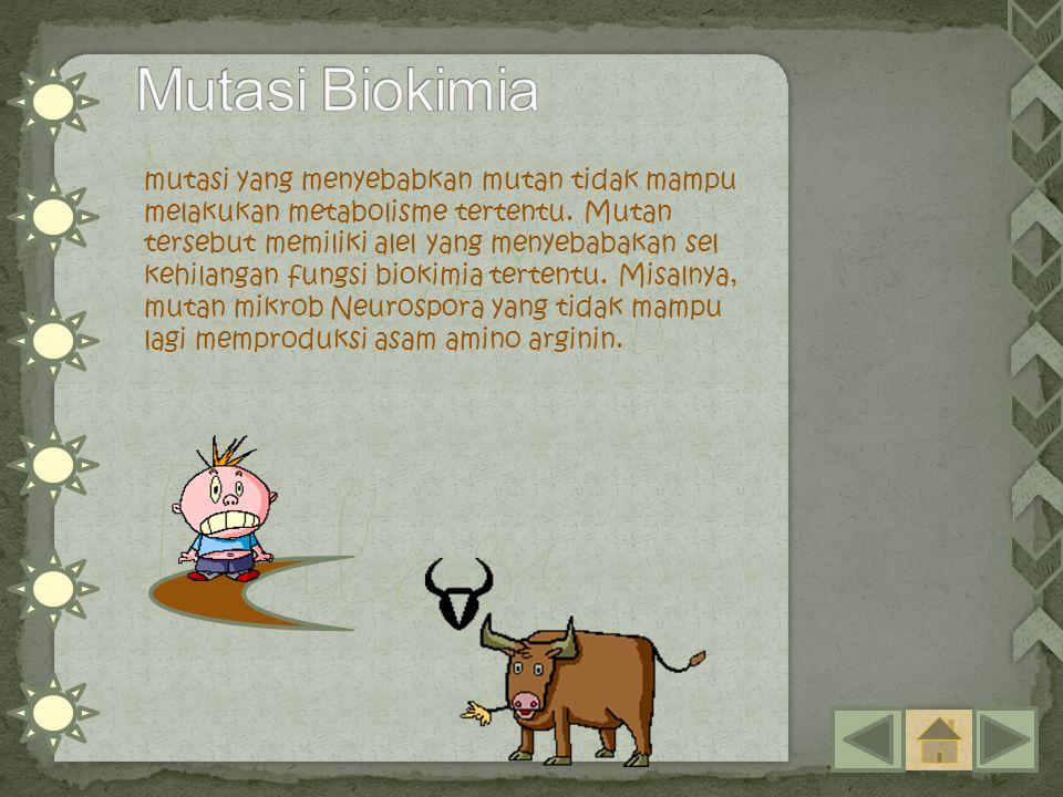 mutasi yang menyebabkan mutan tidak mampu melakukan metabolisme tertentu. Mutan tersebut memiliki alel yang menyebabakan sel kehilangan fungsi biokimi