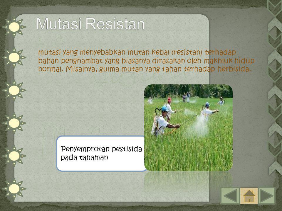 mutasi yang menyebabkan mutan kebal (resistan) terhadap bahan penghambat yang biasanya dirasakan oleh makhluk hidup normal. Misalnya, gulma mutan yang