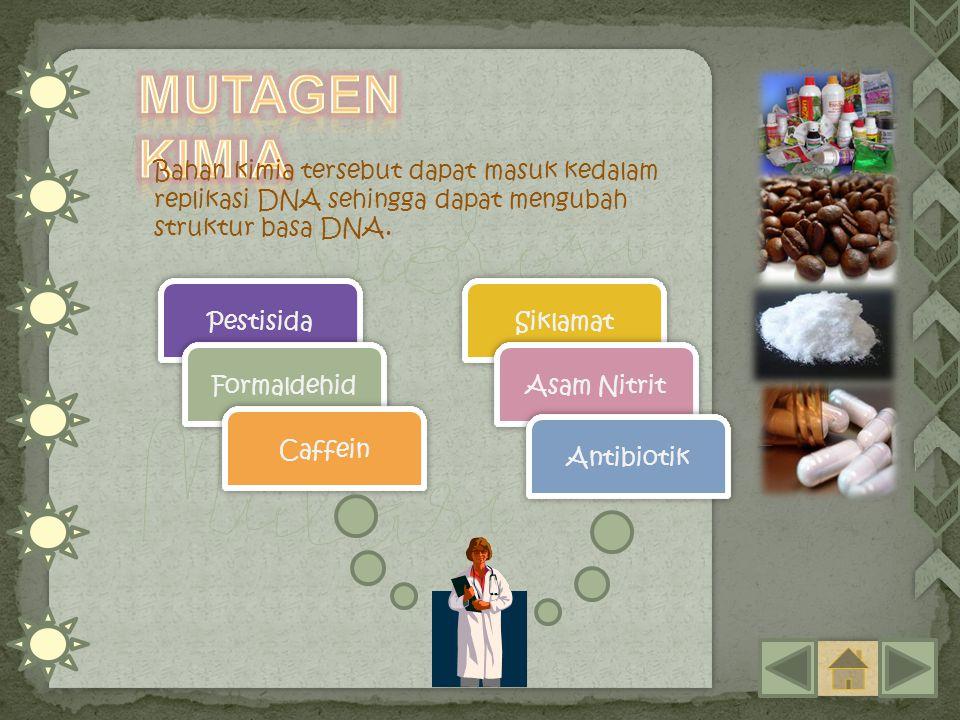 Bahan kimia tersebut dapat masuk kedalam replikasi DNA sehingga dapat mengubah struktur basa DNA. Pestisida Formaldehid Caffein Siklamat Asam Nitrit A