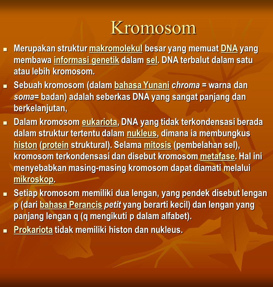 Kromosom Merupakan struktur makromolekul besar yang memuat DNA yang membawa informasi genetik dalam sel.