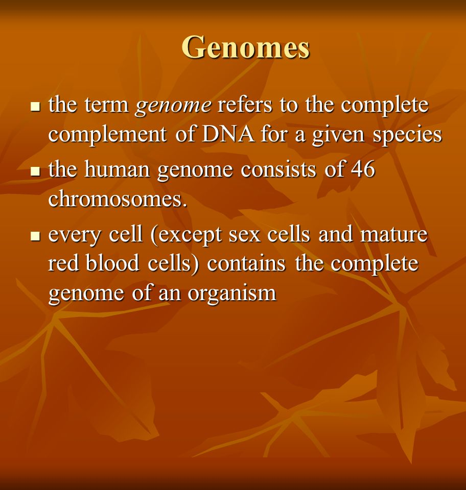 Genomes the term genome refers to the complete complement of DNA for a given species the term genome refers to the complete complement of DNA for a gi
