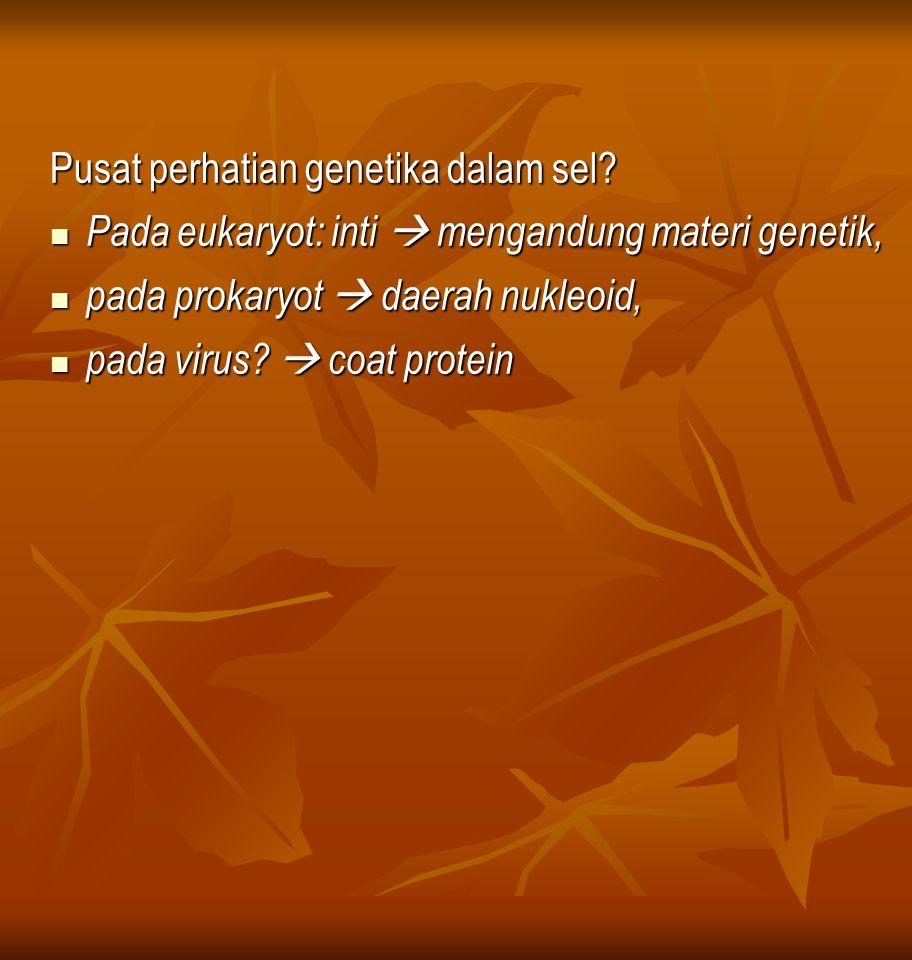 Pusat perhatian genetika dalam sel.