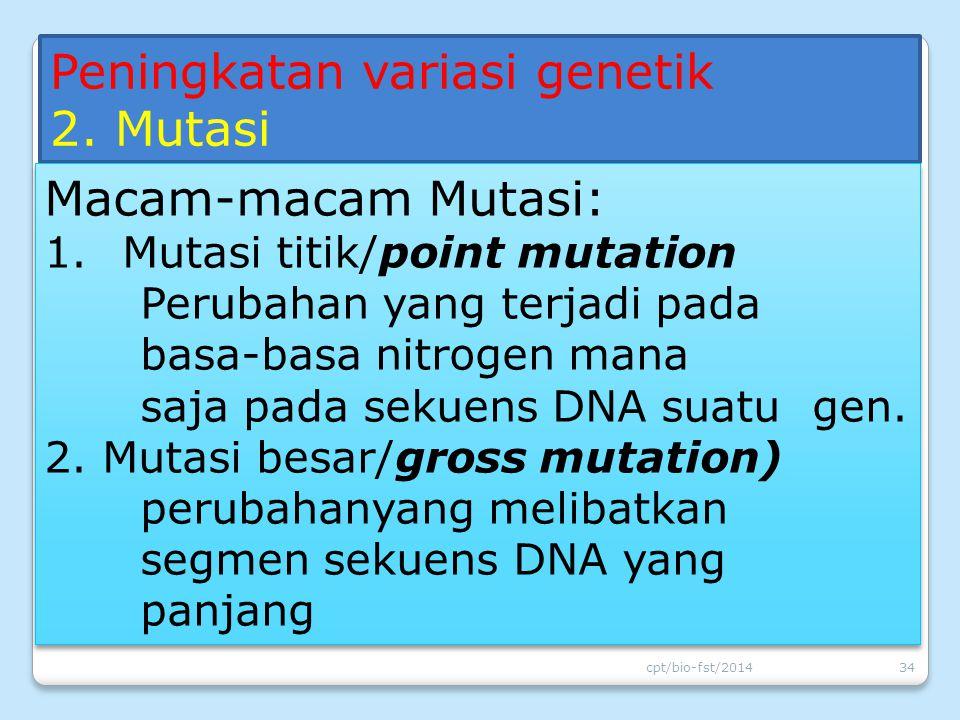 Peningkatan variasi genetik 2. Mutasi Macam-macam Mutasi: 1.Mutasi titik/point mutation Perubahan yang terjadi pada basa-basa nitrogen mana saja pada