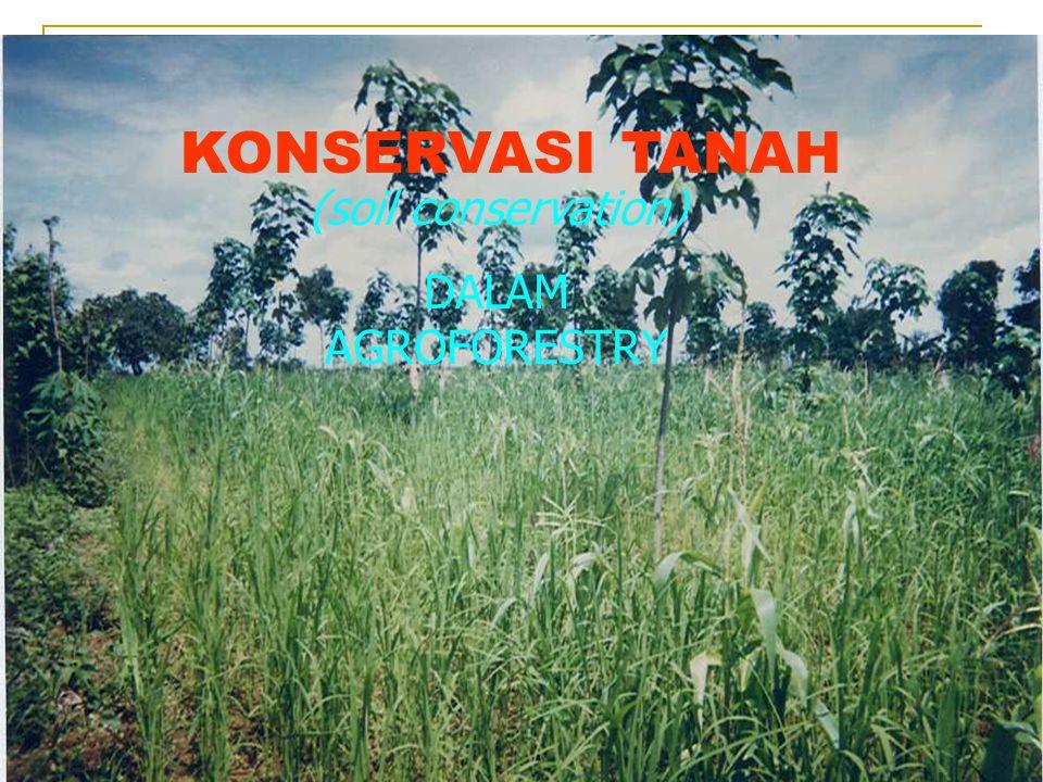 PENDAHULUAN Apa itu konservasi tanah .Apa itu agroforestry .