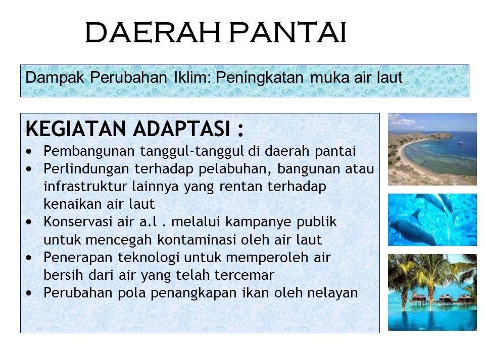 DAERAH PANTAI KEGIATAN ADAPTASI :  Pembangunan tanggul-tanggul di daerah pantai  Perlindungan terhadap pelabuhan, bangunan atau infrastruktur lainny