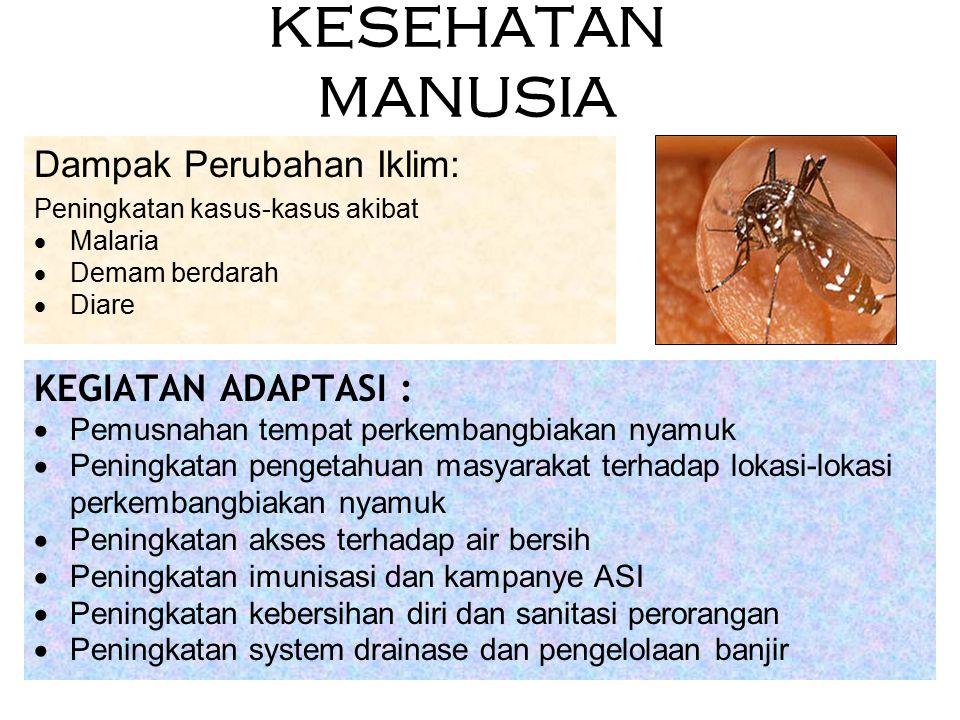 KESEHATAN MANUSIA KEGIATAN ADAPTASI :  Pemusnahan tempat perkembangbiakan nyamuk  Peningkatan pengetahuan masyarakat terhadap lokasi-lokasi perkemba