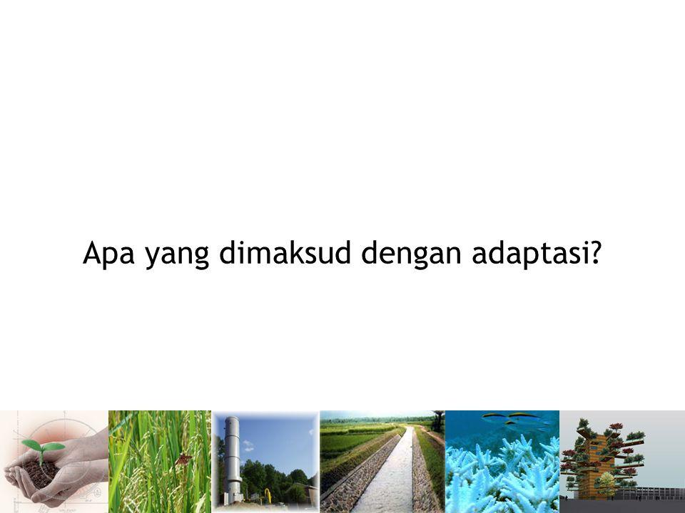 PERTANIAN KEGIATAN ADAPTASI :  Konservasi air dan tanah  Aforestasi melalui agroforestry dengan tanaman pengikat nitrogen  Penyesuaian waktu tanam yang dilakukan oleh petani  Penanaman jenis tanaman yang lebih tahan terhadap perubahan iklim Dampak Perubahan Iklim: Erosi pada daerah dataran tinggi Gangguan pada sistem pertanian