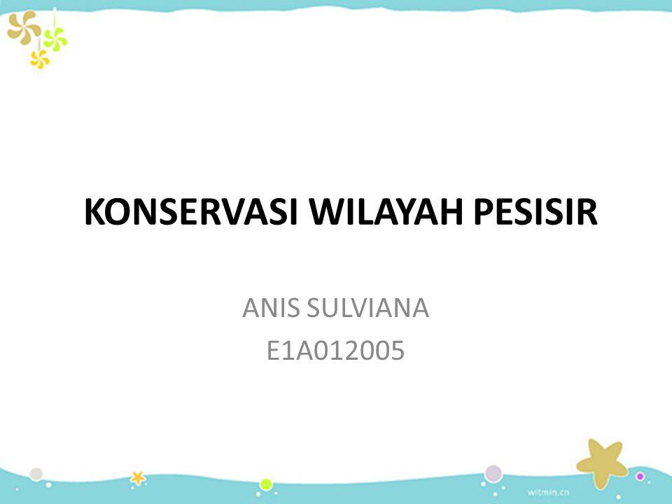 KONSERVASI WILAYAH PESISIR ANIS SULVIANA E1A012005