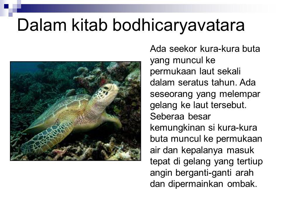 Dalam kitab bodhicaryavatara Ada seekor kura-kura buta yang muncul ke permukaan laut sekali dalam seratus tahun.