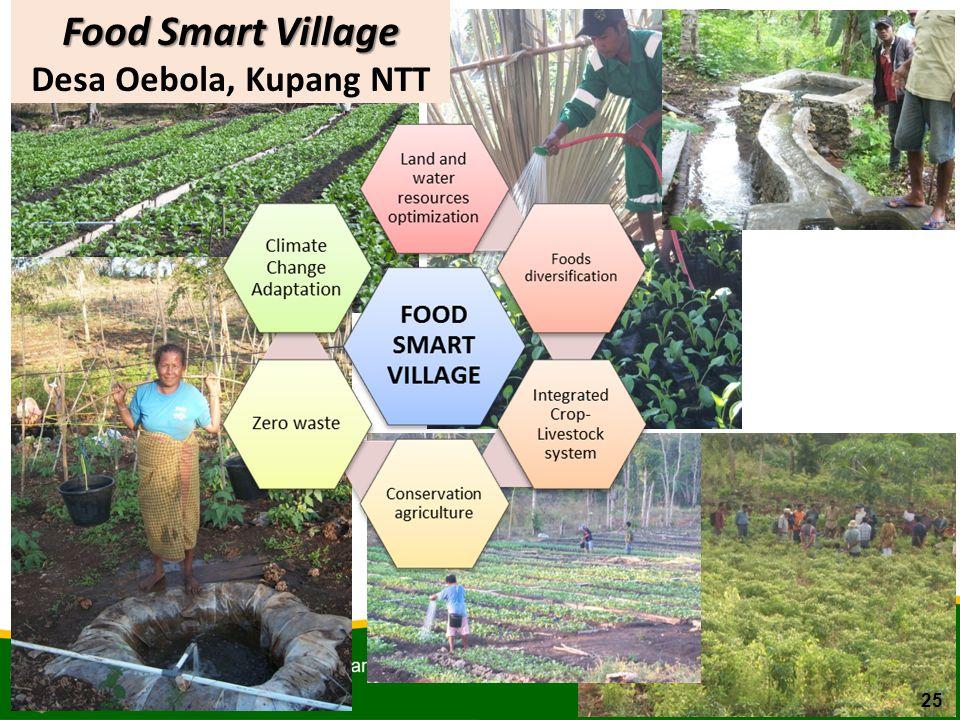 Food Smart Village Desa Oebola, Kupang NTT 25