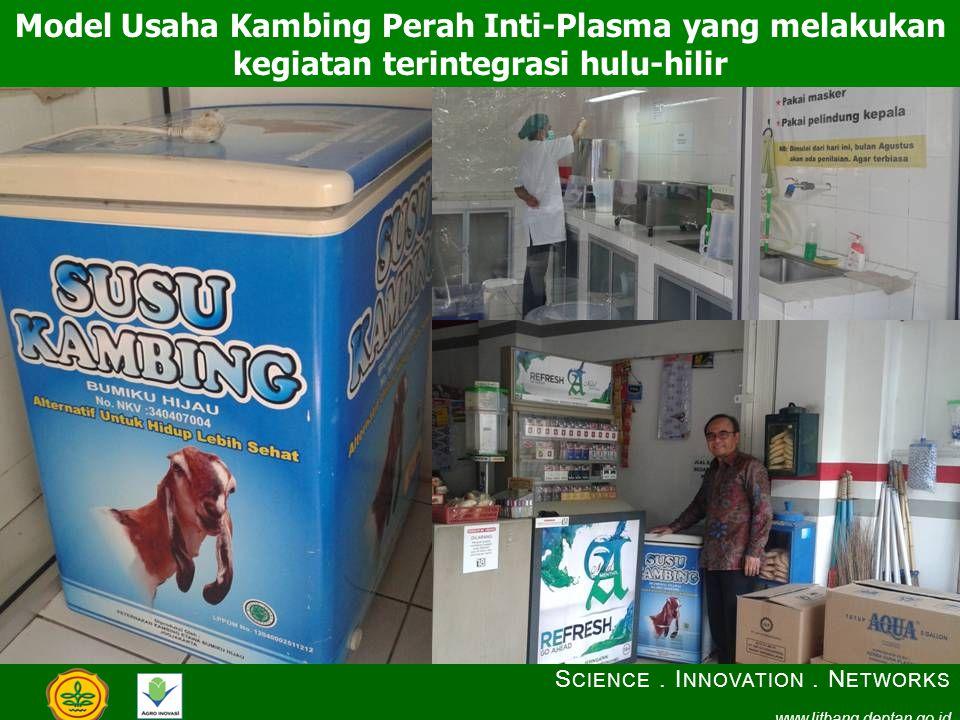 Model Usaha Kambing Perah Inti-Plasma yang melakukan kegiatan terintegrasi hulu-hilir S CIENCE. I NNOVATION. N ETWORKS www.litbang.deptan.go.id