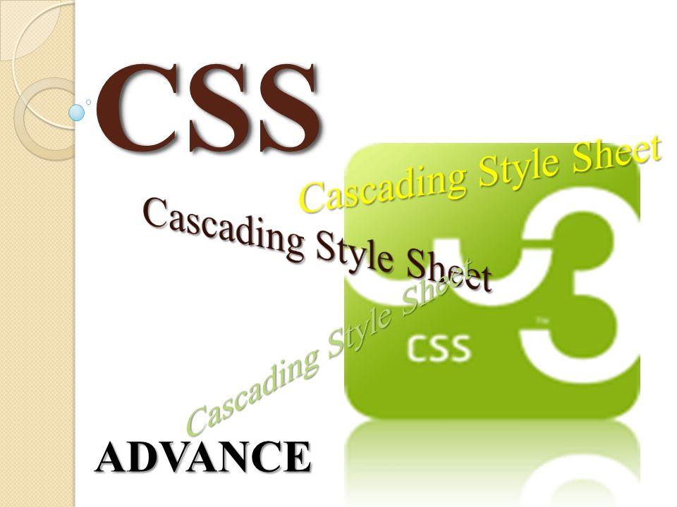 CSSCSS ADVANCE
