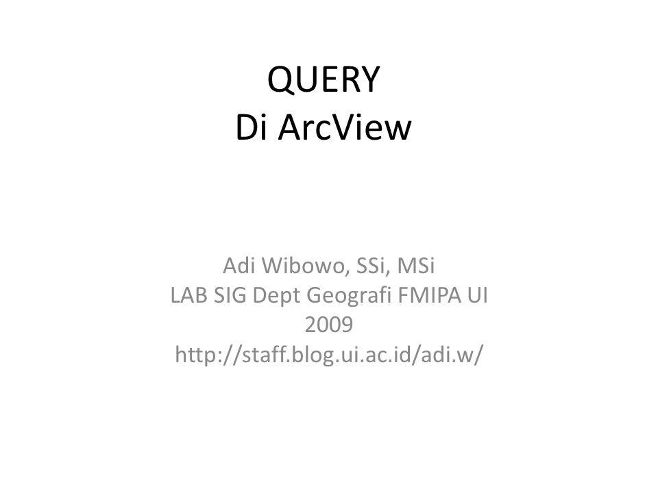 QUERY Di ArcView Adi Wibowo, SSi, MSi LAB SIG Dept Geografi FMIPA UI 2009 http://staff.blog.ui.ac.id/adi.w/