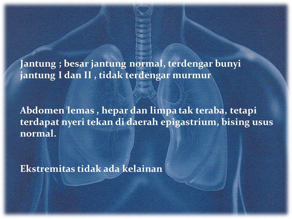 Jantung ; besar jantung normal, terdengar bunyi jantung I dan II, tidak terdengar murmur Abdomen lemas, hepar dan limpa tak teraba, tetapi terdapat ny