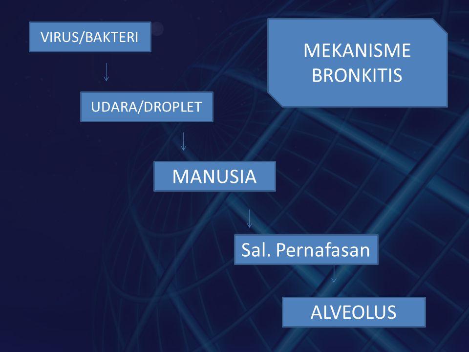 VIRUS/BAKTERI Sal. Pernafasan UDARA/DROPLET MANUSIA ALVEOLUS MEKANISME BRONKITIS