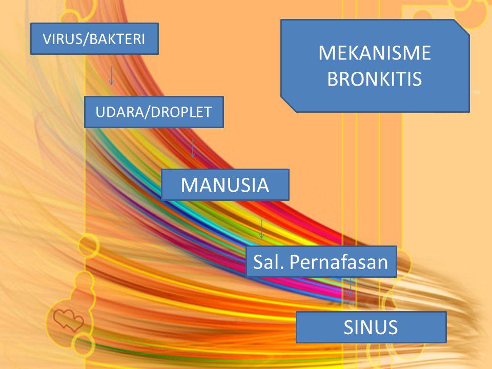 VIRUS/BAKTERI Sal. Pernafasan UDARA/DROPLET MANUSIA SINUS MEKANISME BRONKITIS