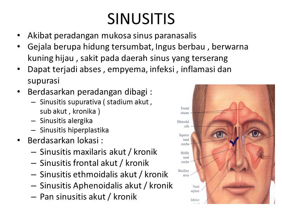 SINUSITIS Akibat peradangan mukosa sinus paranasalis Gejala berupa hidung tersumbat, Ingus berbau, berwarna kuning hijau, sakit pada daerah sinus yang