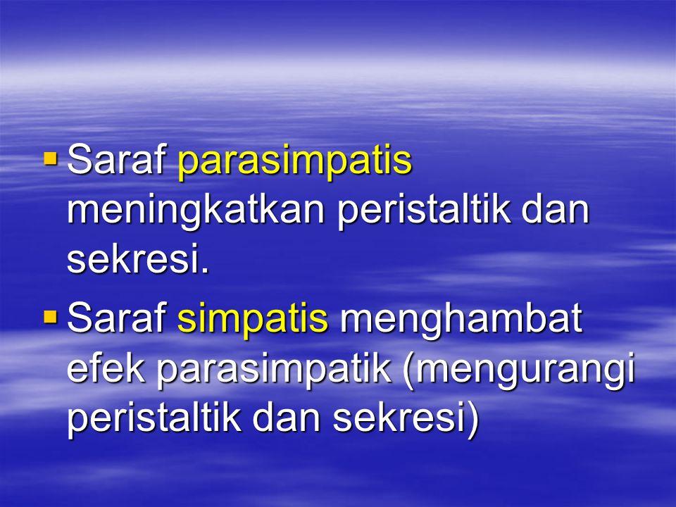  Saraf parasimpatis meningkatkan peristaltik dan sekresi.  Saraf simpatis menghambat efek parasimpatik (mengurangi peristaltik dan sekresi)