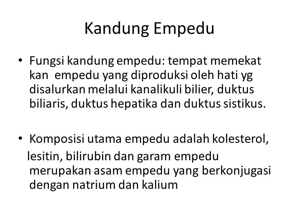 Kandung Empedu Fungsi kandung empedu: tempat memekat kan empedu yang diproduksi oleh hati yg disalurkan melalui kanalikuli bilier, duktus biliaris, du