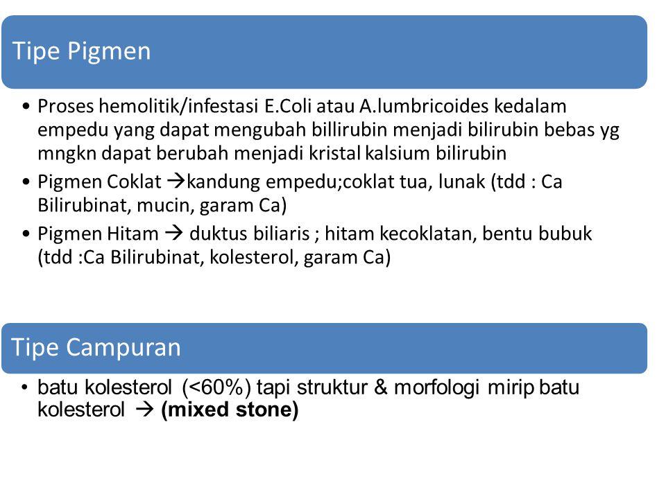 Tipe Pigmen Proses hemolitik/infestasi E.Coli atau A.lumbricoides kedalam empedu yang dapat mengubah billirubin menjadi bilirubin bebas yg mngkn dapat