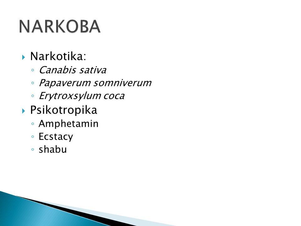  Narkotika: ◦ Canabis sativa ◦ Papaverum somniverum ◦ Erytroxsylum coca  Psikotropika ◦ Amphetamin ◦ Ecstacy ◦ shabu