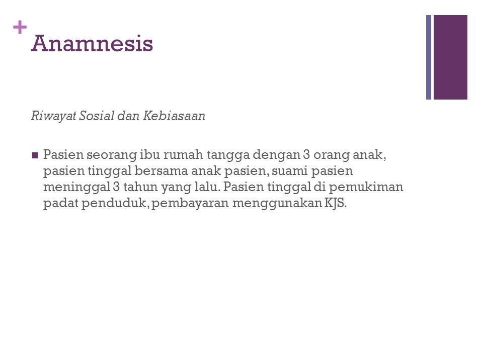 + Anamnesis Riwayat Sosial dan Kebiasaan Pasien seorang ibu rumah tangga dengan 3 orang anak, pasien tinggal bersama anak pasien, suami pasien meningg