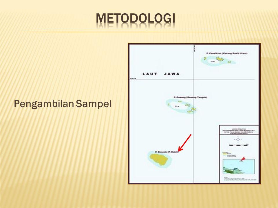 Pengambilan Sampel