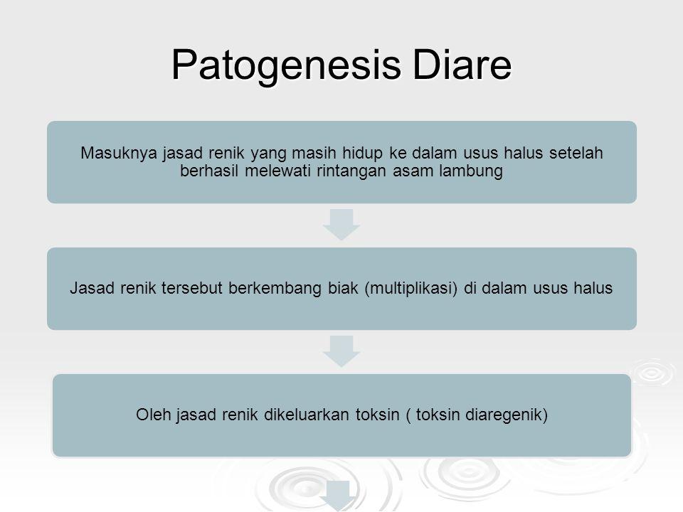 Patogenesis Diare Masuknya jasad renik yang masih hidup ke dalam usus halus setelah berhasil melewati rintangan asam lambung Jasad renik tersebut berk