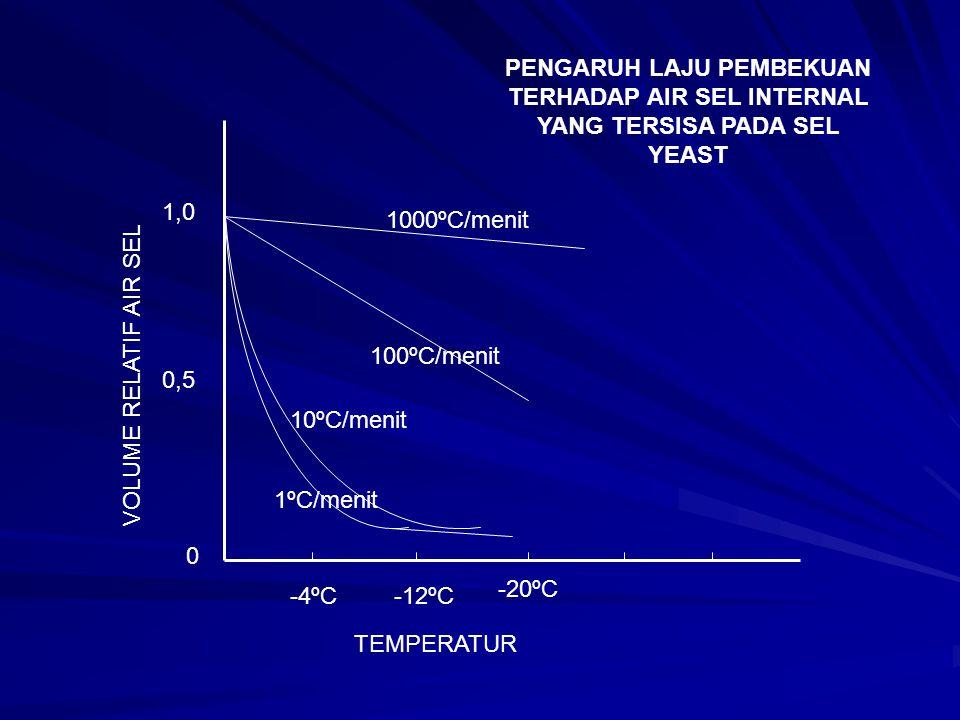 1ºC/menit -12ºC -20ºC 0 1,0 0,5 TEMPERATUR VOLUME RELATIF AIR SEL 10ºC/menit 100ºC/menit 1000ºC/menit PENGARUH LAJU PEMBEKUAN TERHADAP AIR SEL INTERNA