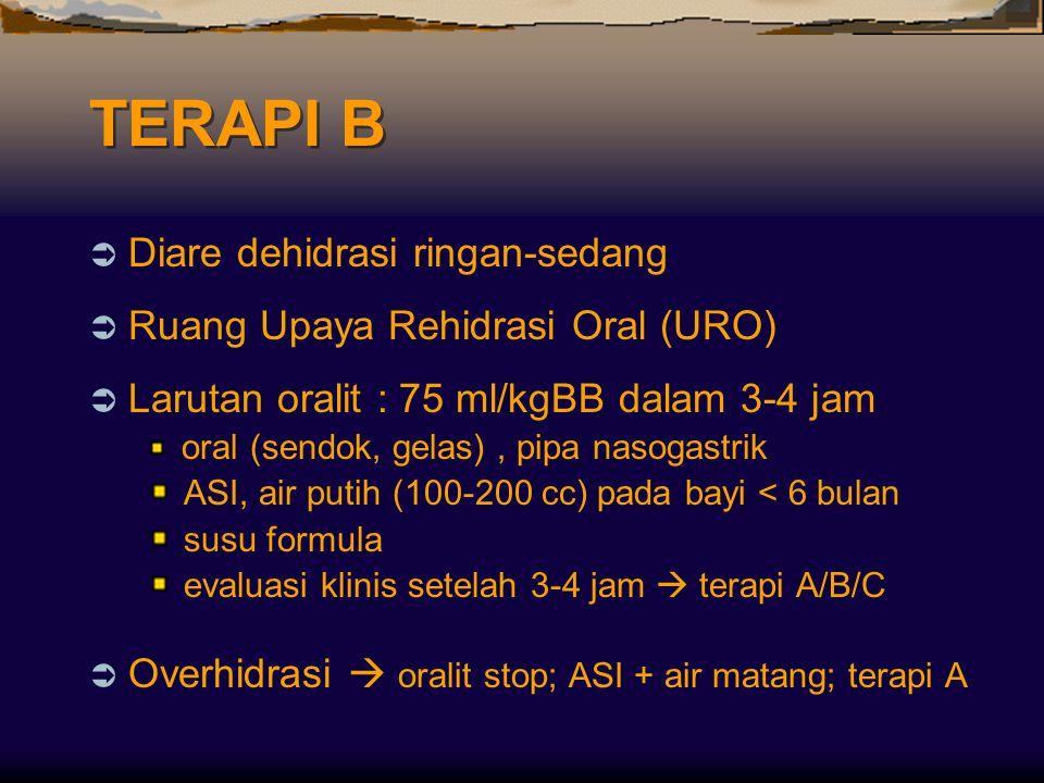 TERAPI B  Diare dehidrasi ringan-sedang  Ruang Upaya Rehidrasi Oral (URO)  Larutan oralit : 75 ml/kgBB dalam 3-4 jam oral (sendok, gelas), pipa nas