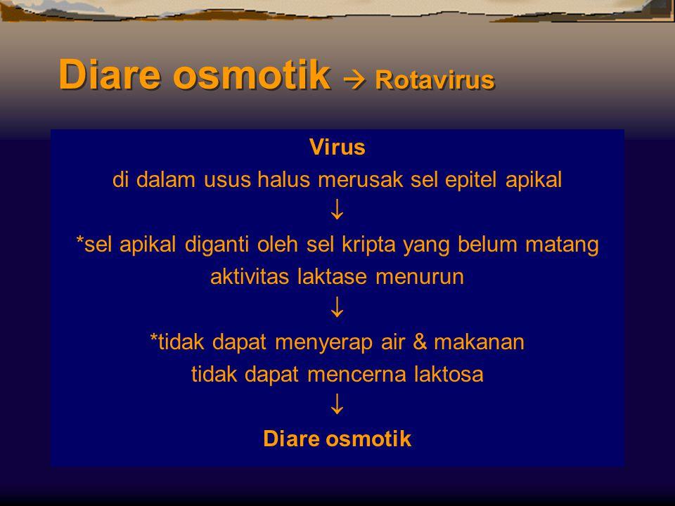 Diare osmotik  Rotavirus Virus di dalam usus halus merusak sel epitel apikal  *sel apikal diganti oleh sel kripta yang belum matang aktivitas laktas