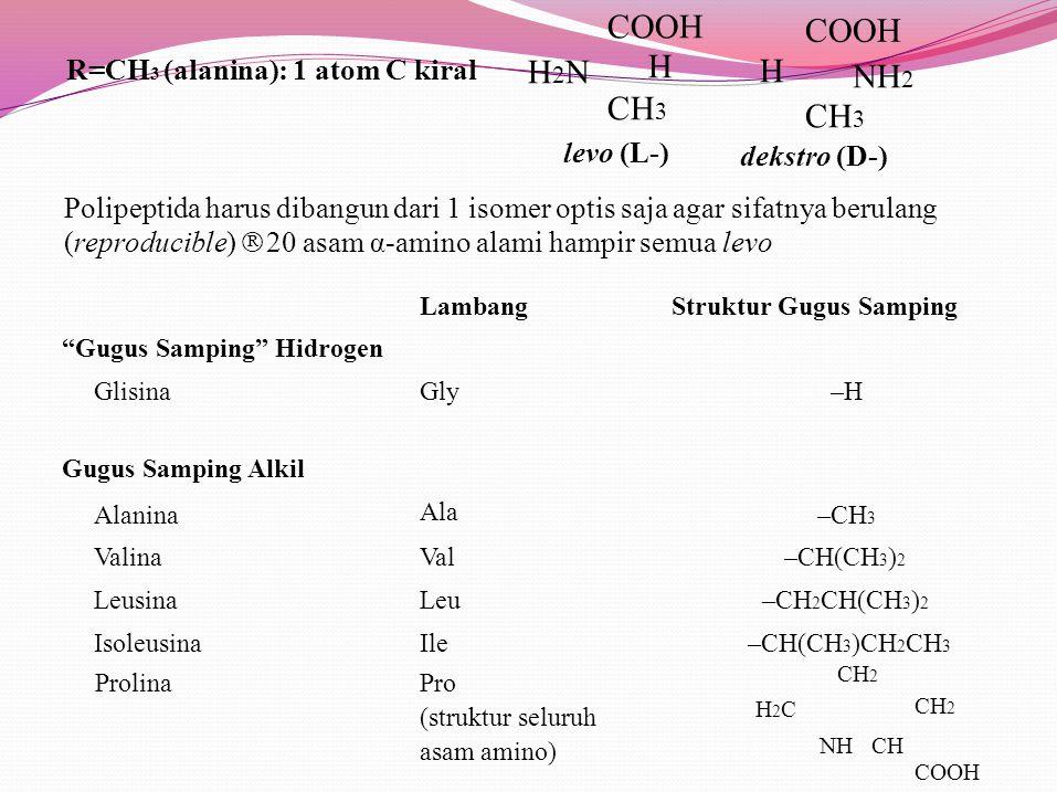 H2NH2N COOH H CH 3 COOH NH 2 CH 3 H levo (L-) dekstro (D-) R=CH 3 (alanina): 1 atom C kiral Polipeptida harus dibangun dari 1 isomer optis saja agar sifatnya berulang (reproducible)  20 asam α-amino alami hampir semua levo LambangStruktur Gugus Samping Gugus Samping Hidrogen Glisina Gugus Samping Alkil Alanina Valina Leusina Isoleusina Gly Ala Val Leu Ile –H –CH 3 –CH(CH 3 ) 2 –CH 2 CH(CH 3 ) 2 –CH(CH 3 )CH 2 CH 3 ProlinaPro (struktur seluruh asam amino) H2CH2C CH 2 NH CH CH 2 COOH