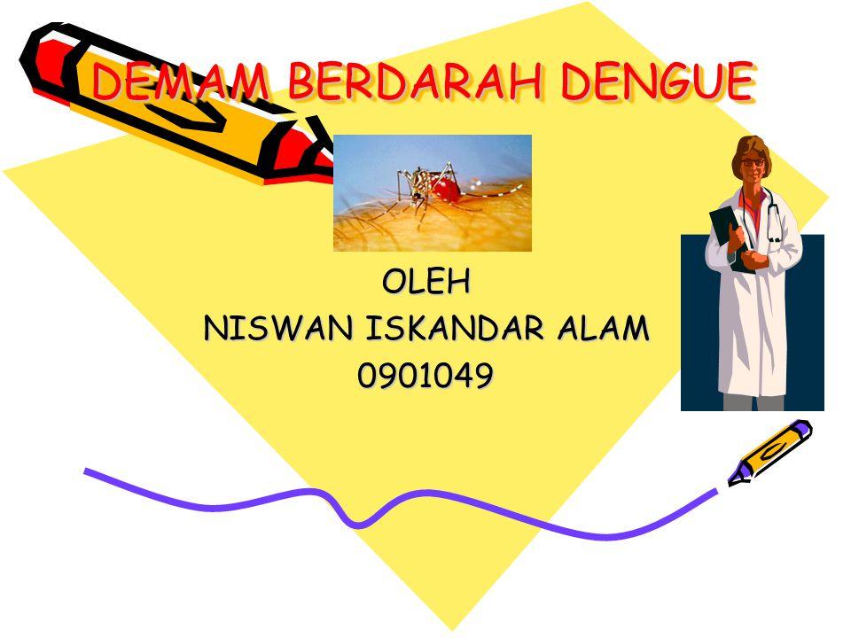 DEMAM BERDARAH DENGUE DEMAM BERDARAH DENGUE OLEH NISWAN ISKANDAR ALAM 0901049