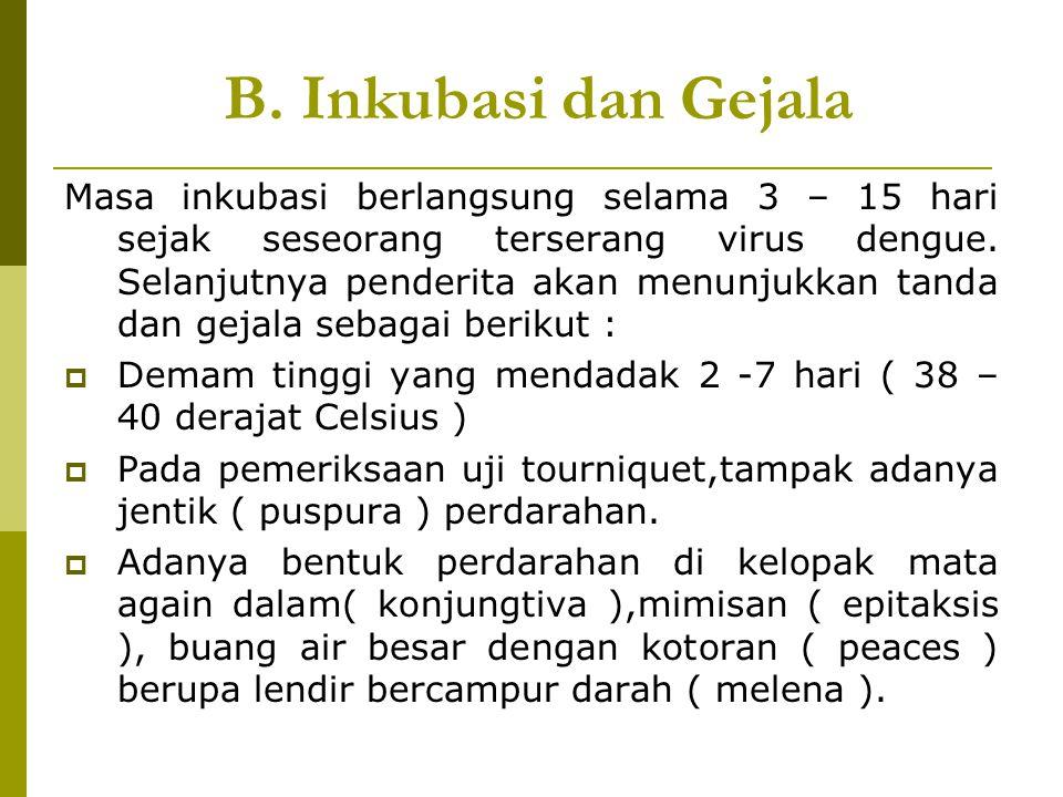 B. Inkubasi dan Gejala Masa inkubasi berlangsung selama 3 – 15 hari sejak seseorang terserang virus dengue. Selanjutnya penderita akan menunjukkan tan