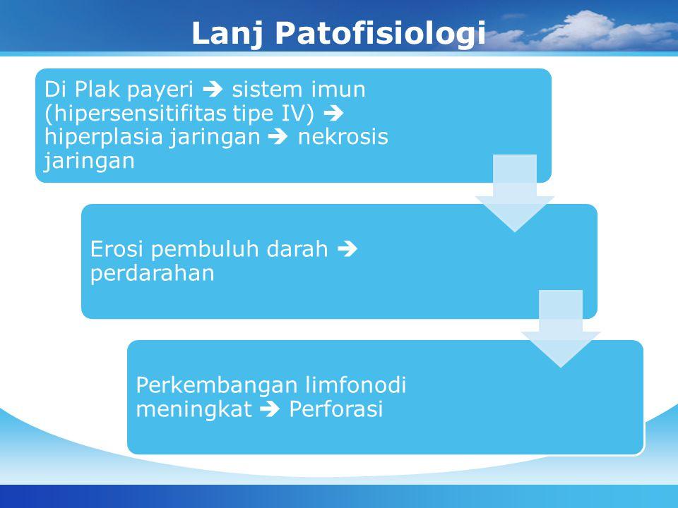 Lanj Patofisiologi Di Plak payeri  sistem imun (hipersensitifitas tipe IV)  hiperplasia jaringan  nekrosis jaringan Erosi pembuluh darah  perdarah