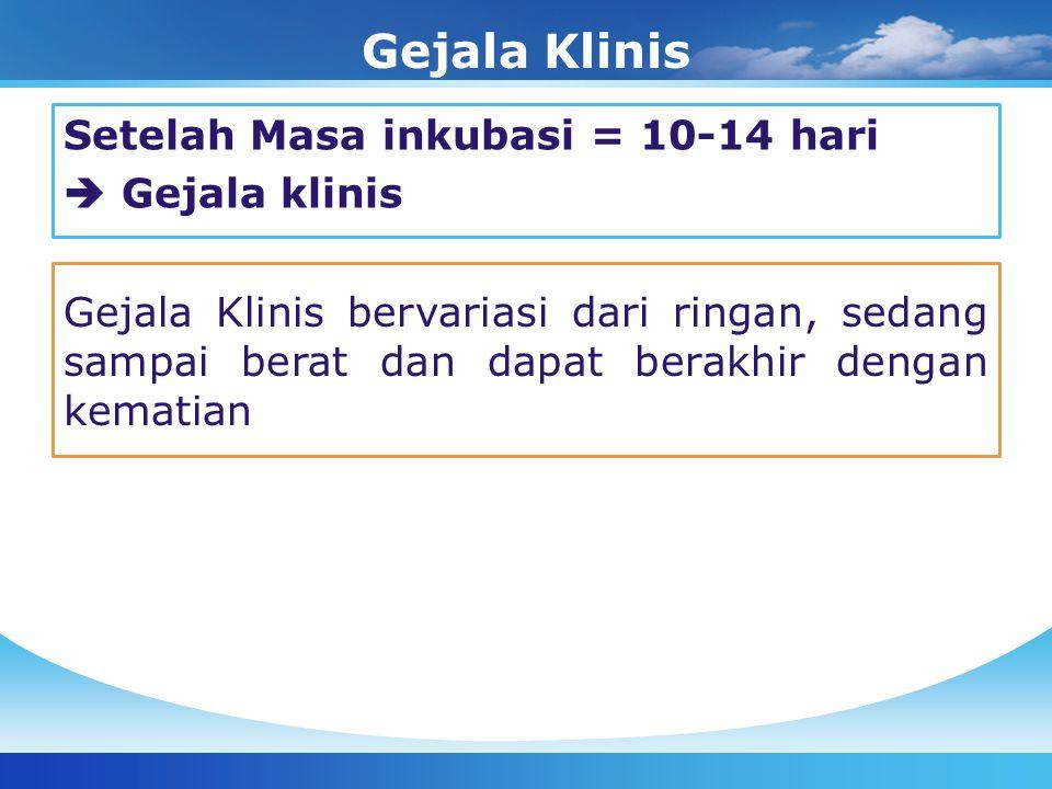 Gejala Klinis Setelah Masa inkubasi = 10-14 hari  Gejala klinis Gejala Klinis bervariasi dari ringan, sedang sampai berat dan dapat berakhir dengan k