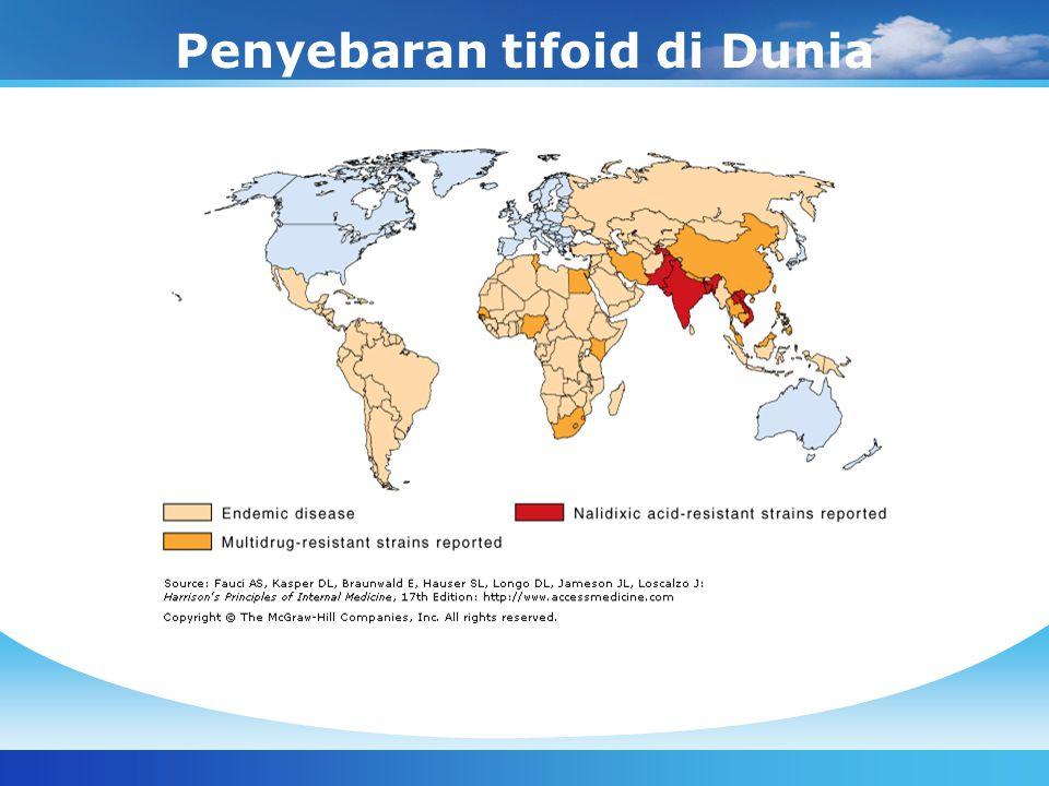 Penyebaran tifoid di Dunia