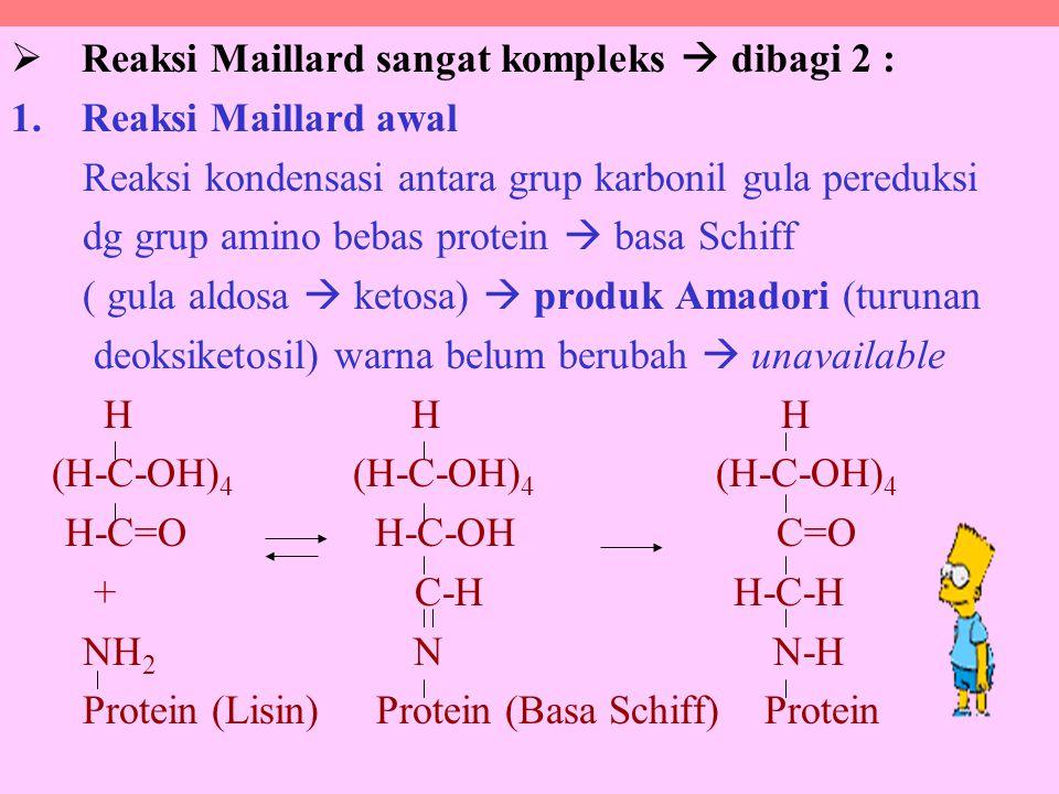  Reaksi Maillard sangat kompleks  dibagi 2 : 1.Reaksi Maillard awal Reaksi kondensasi antara grup karbonil gula pereduksi dg grup amino bebas protein  basa Schiff ( gula aldosa  ketosa)  produk Amadori (turunan deoksiketosil) warna belum berubah  unavailable H H H (H-C-OH) 4 (H-C-OH) 4 (H-C-OH) 4 H-C=O H-C-OH C=O + C-H H-C-H NH 2 N N-H Protein (Lisin) Protein (Basa Schiff) Protein
