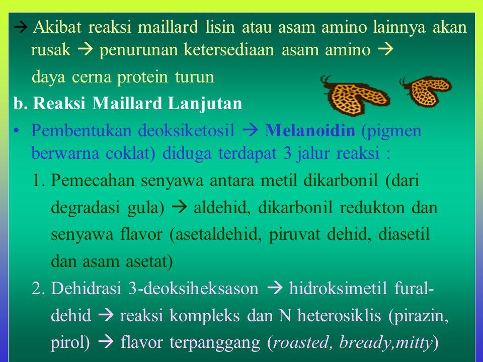  Akibat reaksi maillard lisin atau asam amino lainnya akan rusak  penurunan ketersediaan asam amino  daya cerna protein turun b.