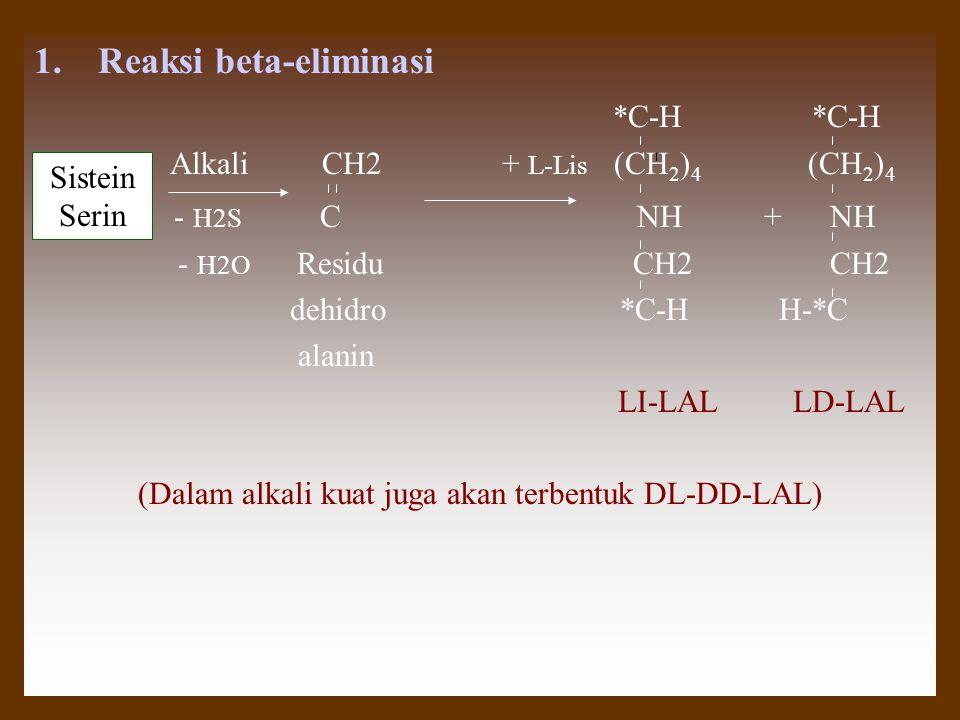 1.Reaksi beta-eliminasi *C-H *C-H Alkali CH2 + L-Lis (CH 2 ) 4 (CH 2 ) 4 - H2S C NH + NH - H2O Residu CH2 CH2 dehidro *C-H H-*C alanin LI-LAL LD-LAL (Dalam alkali kuat juga akan terbentuk DL-DD-LAL) Sistein Serin