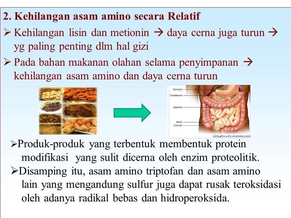 2. Kehilangan asam amino secara Relatif  Kehilangan lisin dan metionin  daya cerna juga turun  yg paling penting dlm hal gizi  Pada bahan makanan