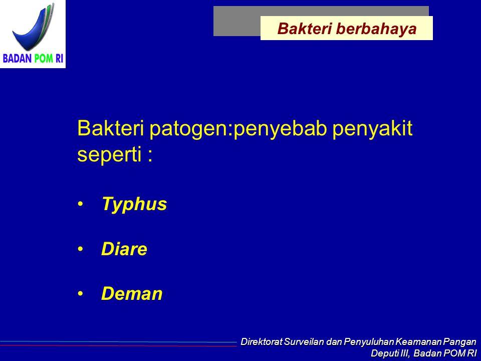 Direktorat Surveilan dan Penyuluhan Keamanan Pangan Deputi III, Badan POM RI Bakteri berbahaya Bakteri patogen:penyebab penyakit seperti : Typhus Diare Deman