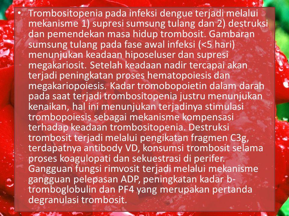 Trombositopenia pada infeksi dengue terjadi melalui mekanisme 1) supresi sumsung tulang dan 2) destruksi dan pemendekan masa hidup trombosit.