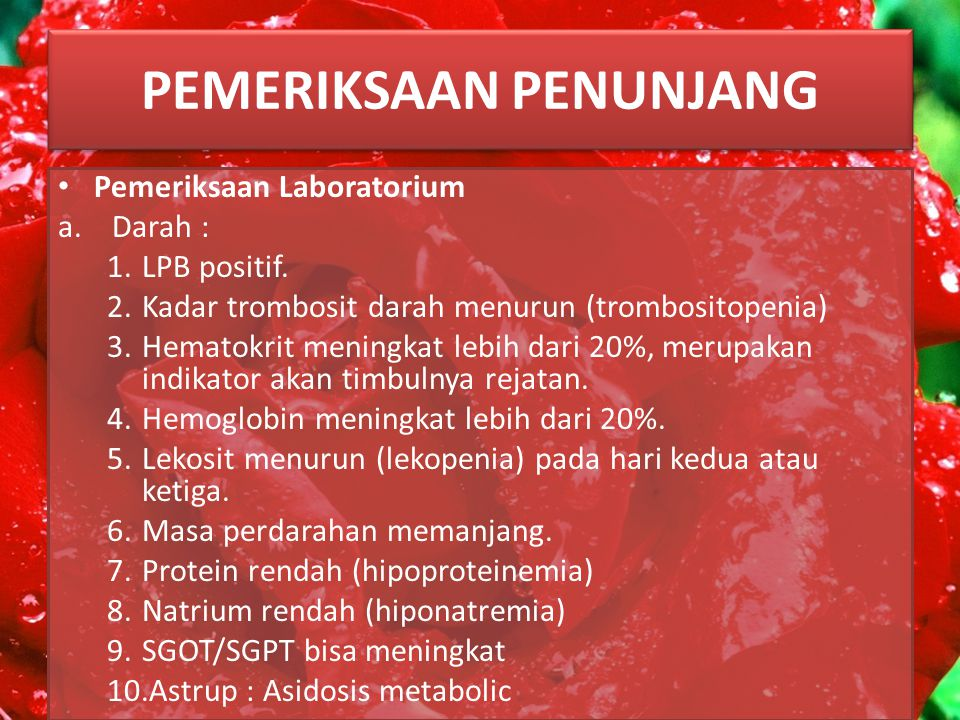 PEMERIKSAAN PENUNJANG Pemeriksaan Laboratorium a.Darah : 1.LPB positif.